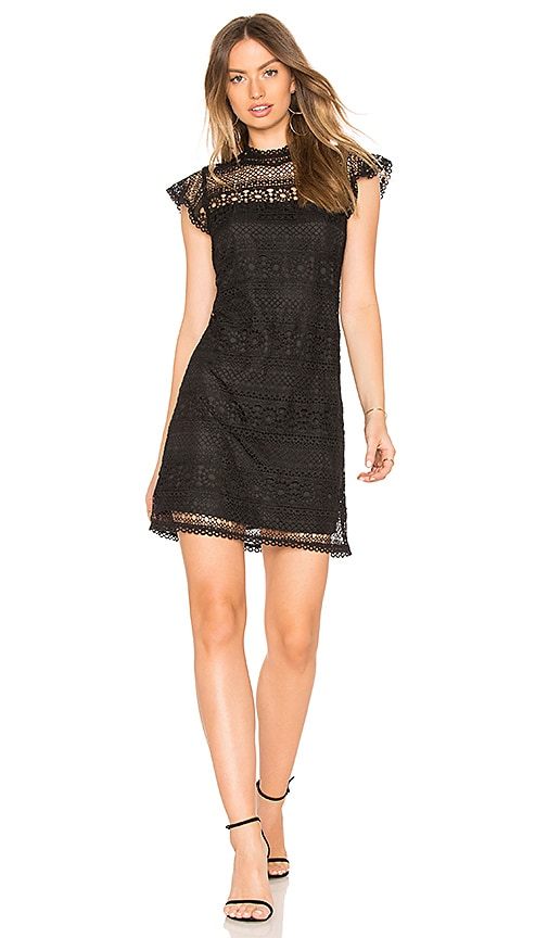 cupcakes and cashmere Delight Dress in Black