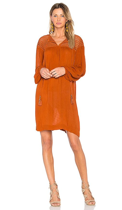 Deby Debo Chene Dress in Brown