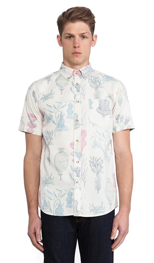 Belbin Bjorn Shirt