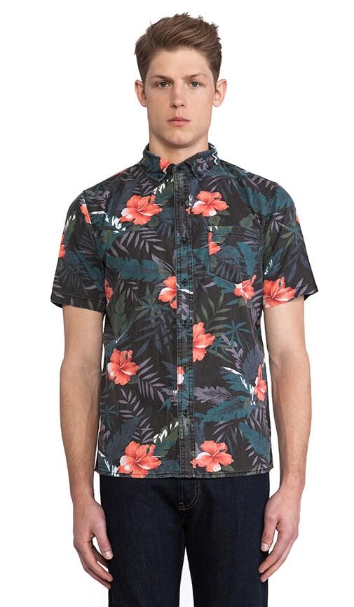 Belbin Shirt