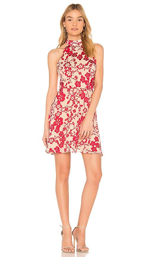 devlin Maryanne Dress in Red