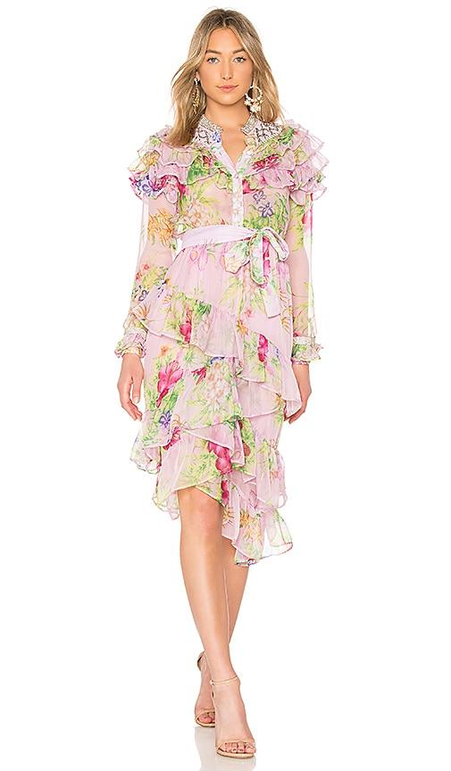 Dodo Bar Or Silvana Dress in Pink