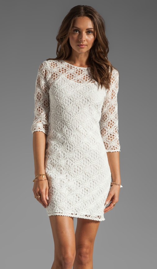 Cat Crochet Lace Long Sleeve Dress