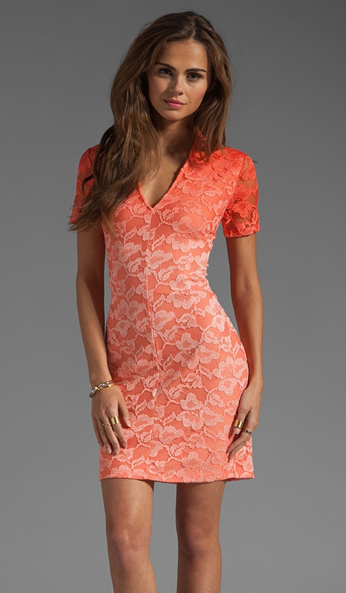 Alexis Stretch Lace Dress