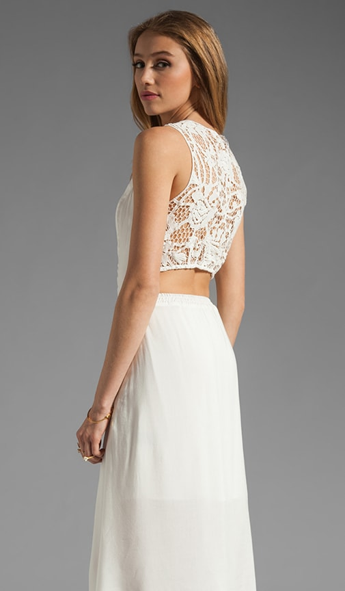 Noella Lace Panel Dress