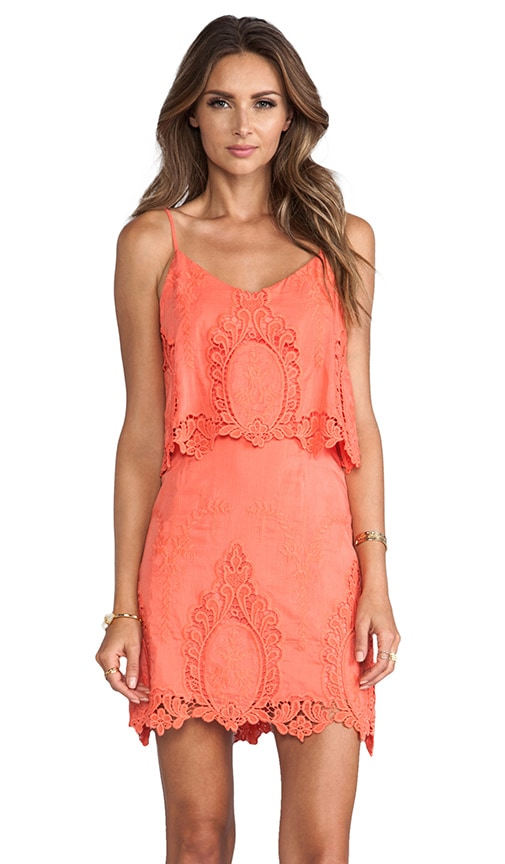 Jeralyn Petticoat Embroidery Mini Dress