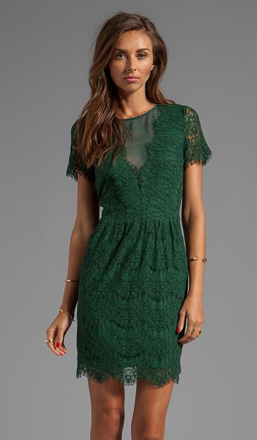 Saurus Eyelash Lace Dress