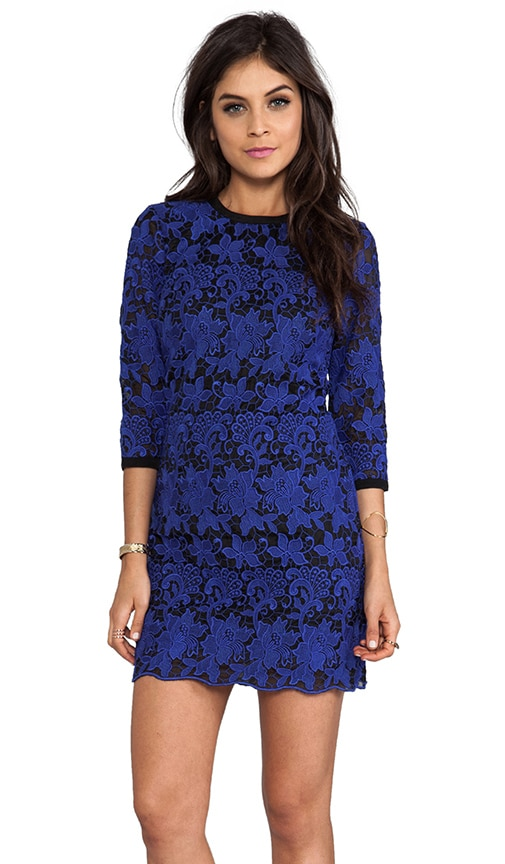 Amita Pop Out Lace Dress