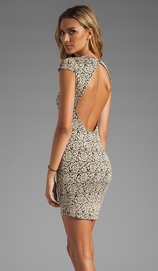 Betsey Stretch Rose Lace Dress