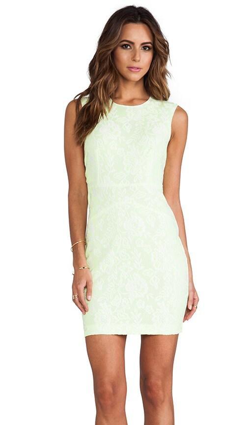 Baccus Dress