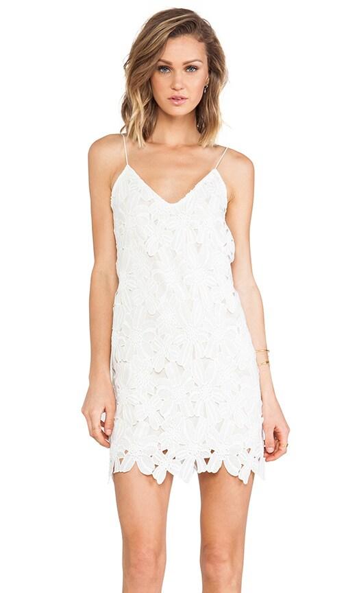 Abriella Dress