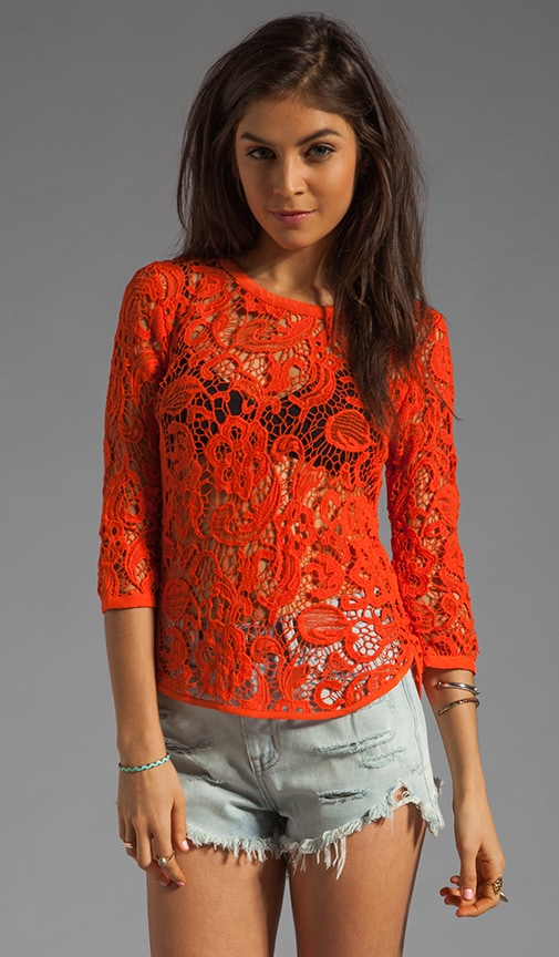 Abelle Scroll Lace Blouse