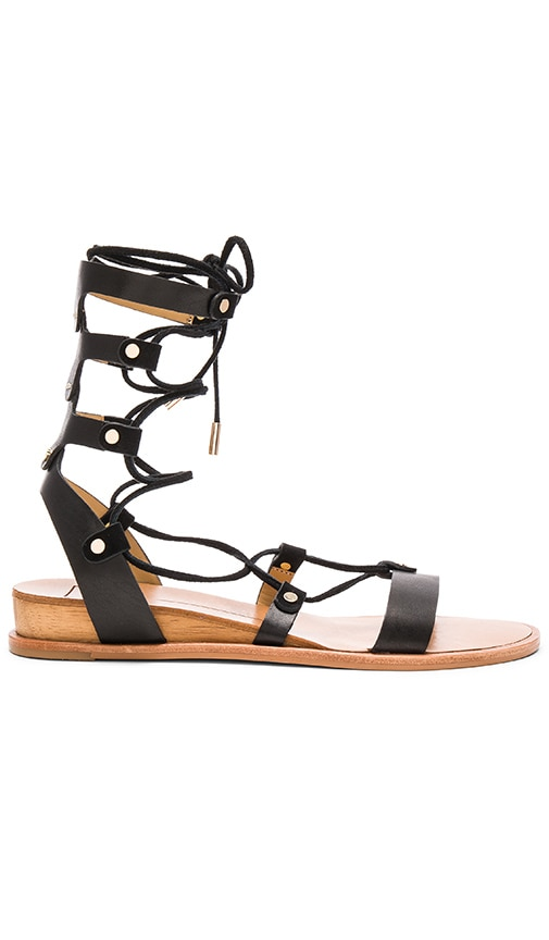 Dolce Vita Pax Sandal in Black