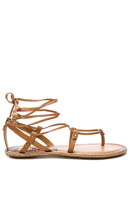 Dolce Vita Karma Sandal in Caramel Leather