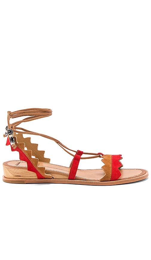 Dolce Vita Pedra Sandal in Red