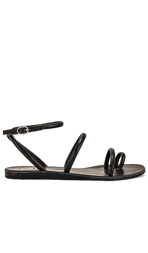 Dolce Vita Sandals DAREN SANDAL