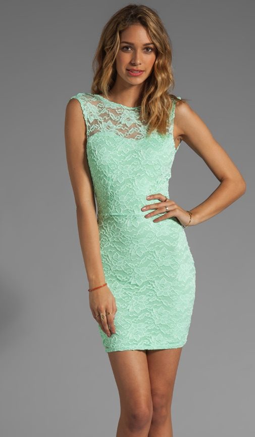Passion Lace Boat Neck Dress