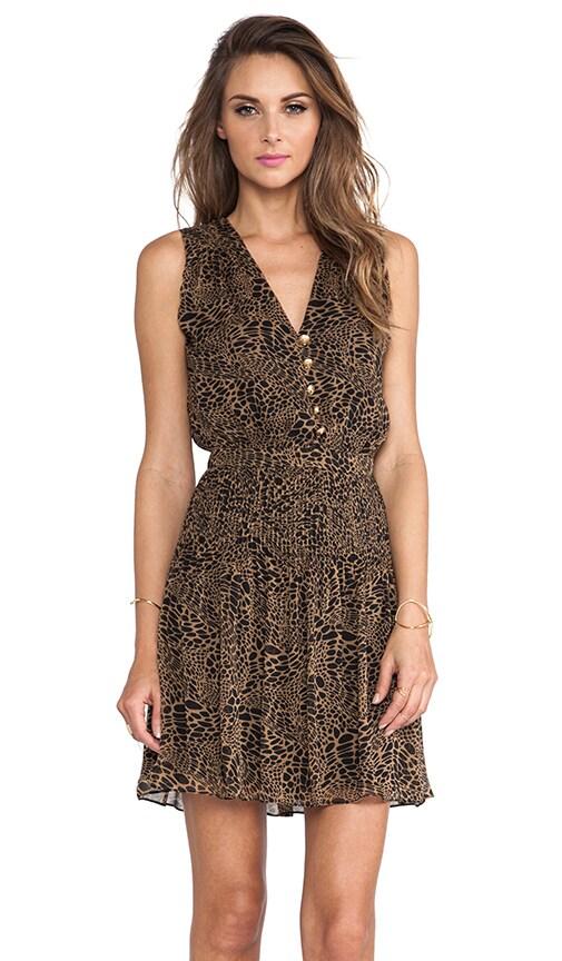 Zaeta Dress