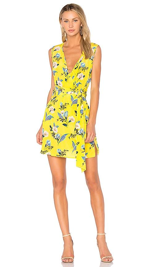 Wrap Dress Diane Von Furstenberg