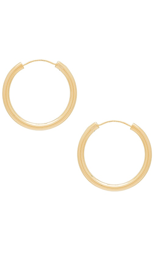 Medium Holly Hoops