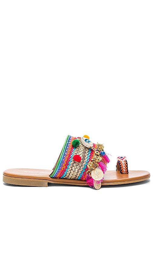 Jaipur Sandal