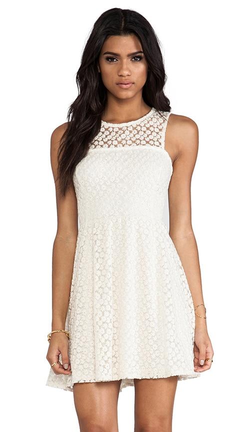 Taylor Lace Dress