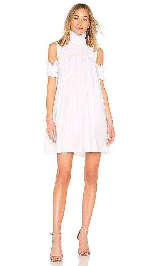 Lily Shirt Dress