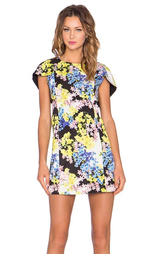 ELLIATT Botanic Shift Dress in Multi