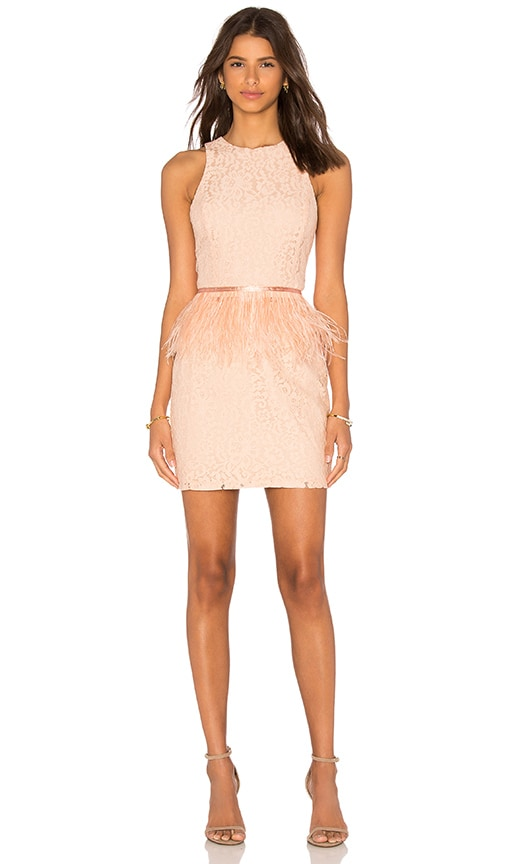 Endless Rose Lace Feather Peplum Dress in Pink