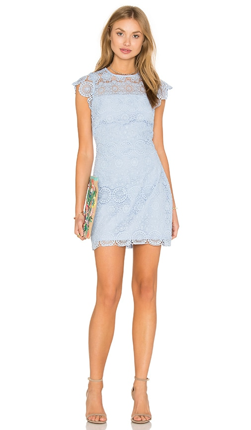 Endless Rose Lace Shift Dress in Blue