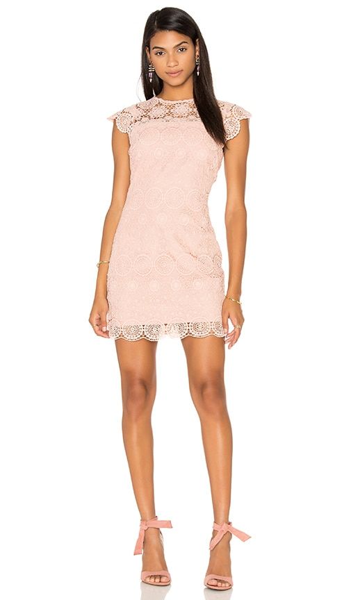 Endless Rose Crew Neck Lace Mini Dress in Pink