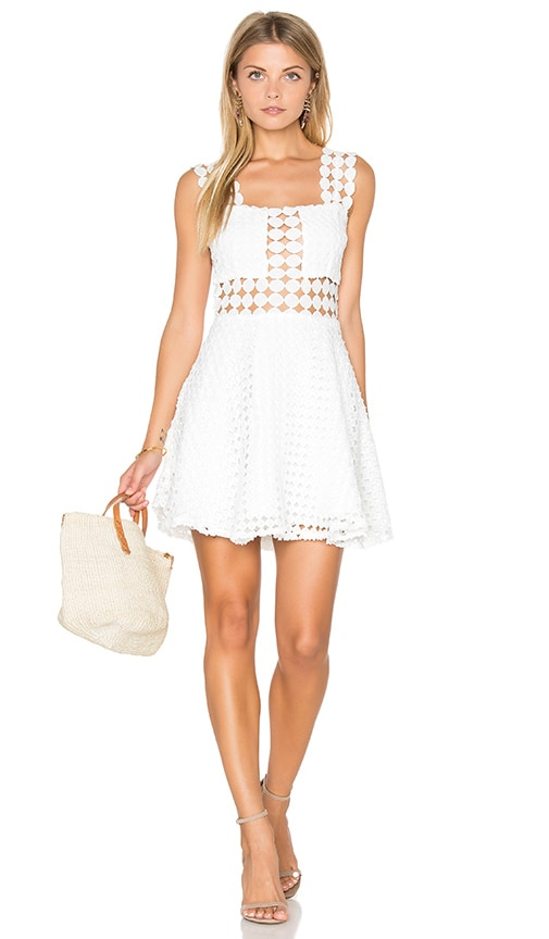 Endless Rose Sleeveless Fit & Flare Mini Dress in White