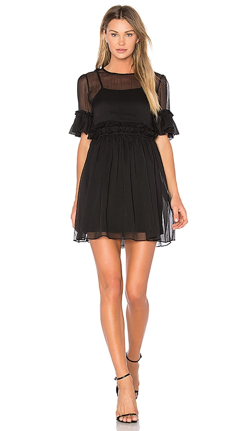 Endless Rose Sheer Shift Dress in Black
