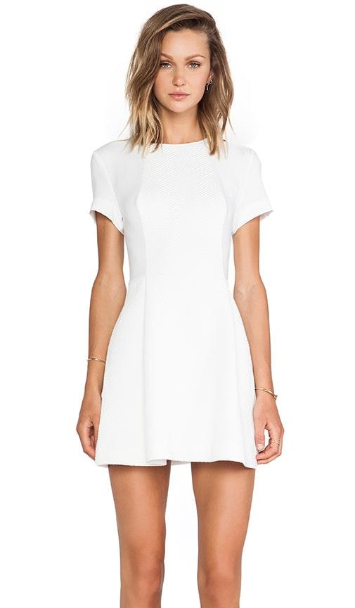 Hyper Paradise Dress