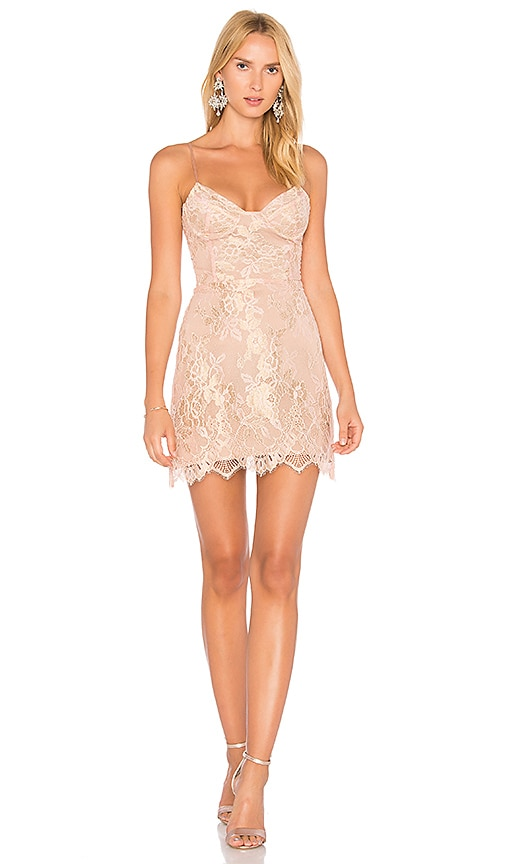 For Love & Lemons Bumble Bustier Dress in Rose