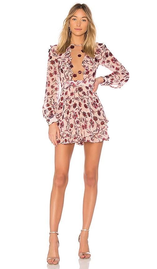 For Love & Lemons Agnes Mini Dress in Rose