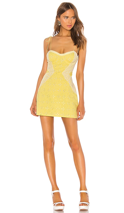 Picnic Mini Dress