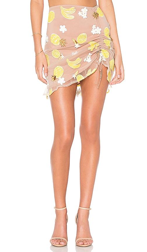 0ba3067f0eb Fruitpunch Shirred Mini Skirt. Fruitpunch Shirred Mini Skirt. For Love    Lemons