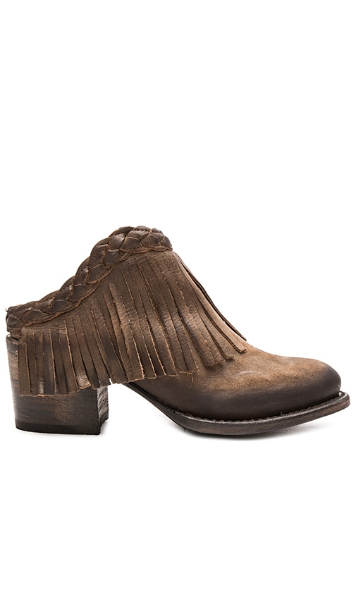 Freebird by Steven Lucy Bootie in Brown Leather