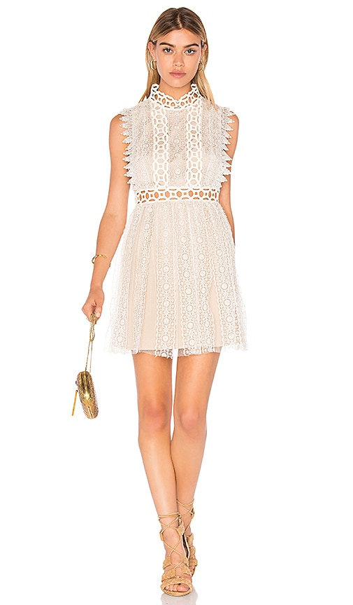 Forever Lace Babydoll Dress