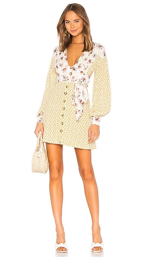 Wonderland Mini Dress
