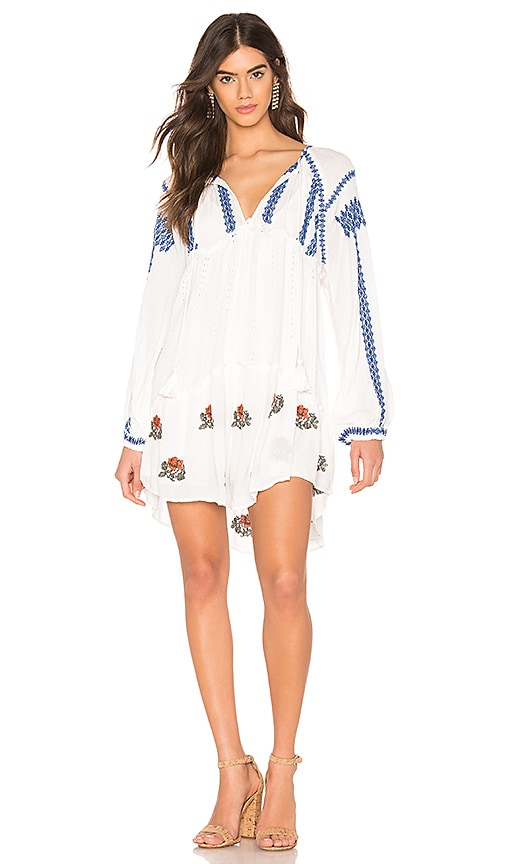 Wild Horses Embroidered Mini Dress