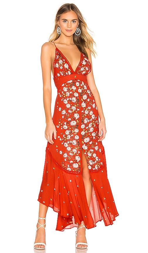 Paradise Printed Maxi Dress