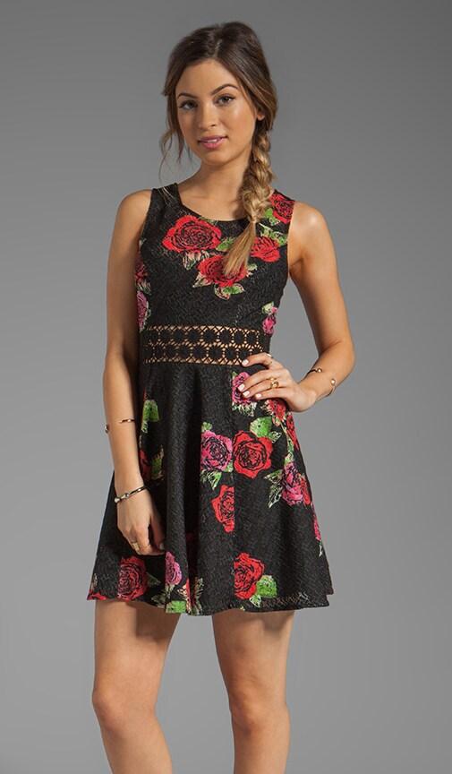 Printed Daisy Waist Dress
