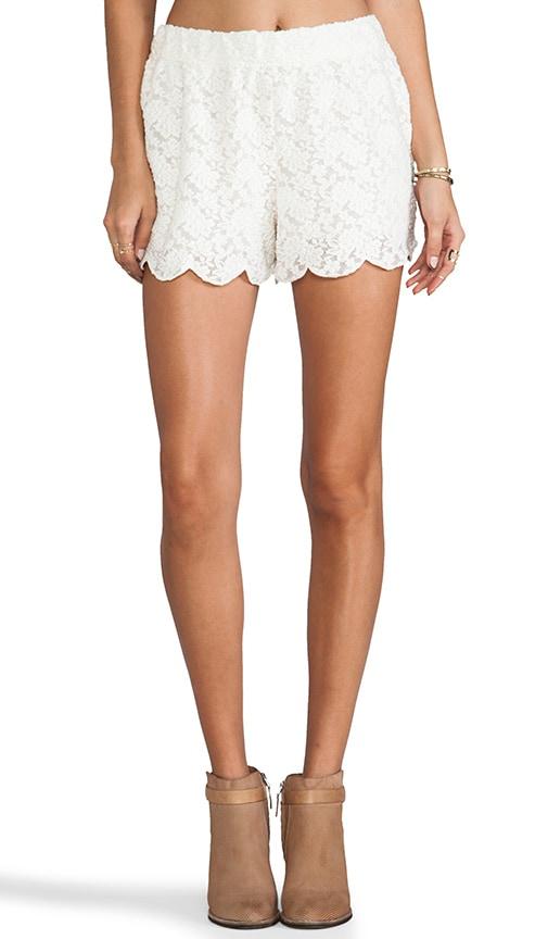Scallop Lace Short