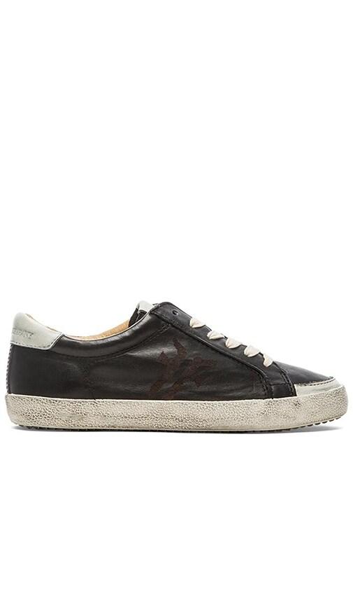 Frye Dillon Low Lace Sneaker in Black