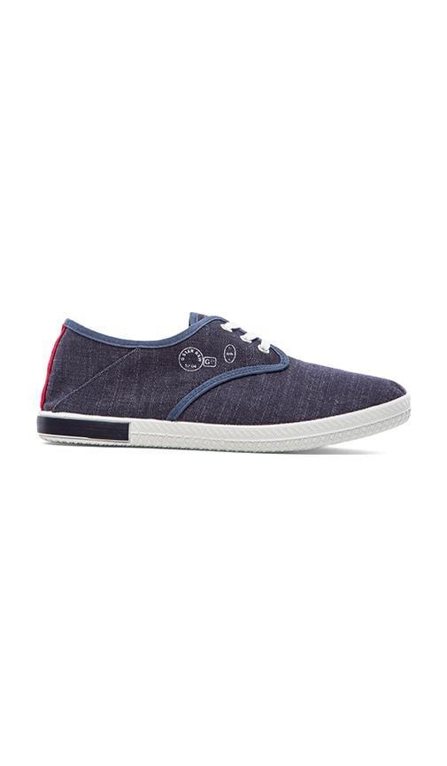 Cove Sneaker