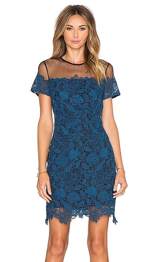 Greylin Kamik Lace Dress in Azure