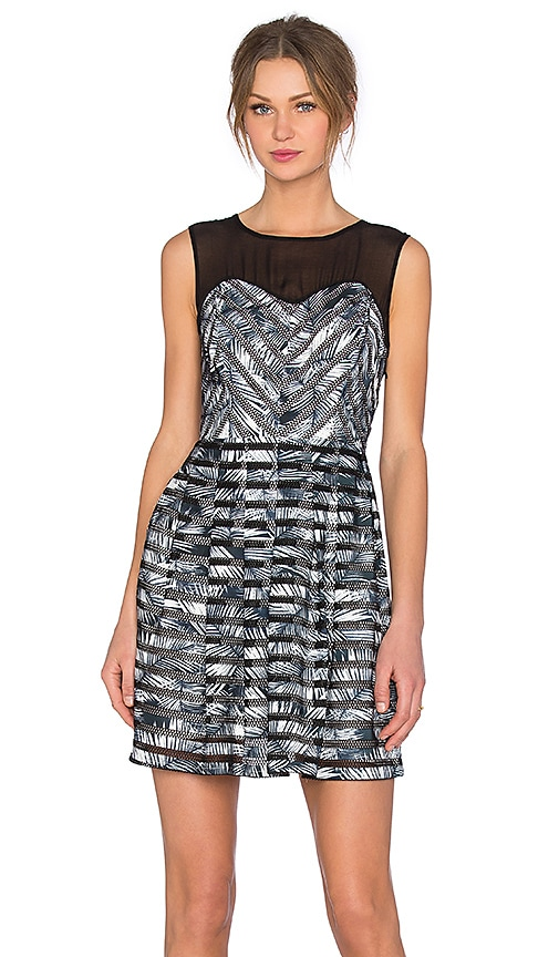 Greylin Pamela Fern Printed Dress in Black