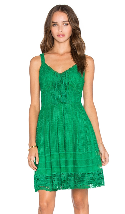 Greylin Calissa Lace Dress in Green